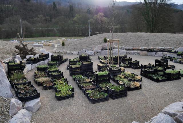 Auf einem großen von Trockenmauern eingerahmten Platz stehen viele Staudenkisten für die Bepflanzung, es sind insgesamt 4780 Wildpflanzen.