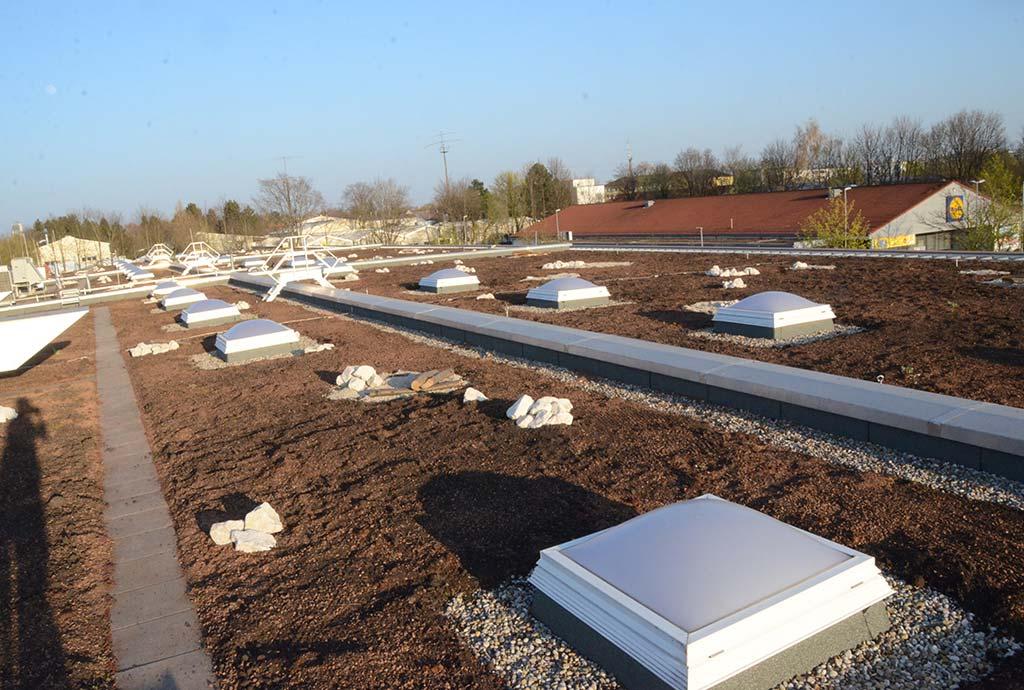 Frisch aufgefülltes Intensiv-Dachsubstrat. Nach dem guten Start unseres Biodiversitätsdach-Konzeptes werden 2020 die anderen Flächen des Daches ebenso erhöht
