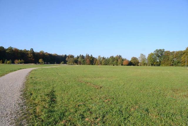 Blick über eine große Grasfläche. Obere Eierweise vorher. 4500 Quadtrmeter dieser hektargroßen Fläche am Rand von Grünwald werden demnächst umgestaltet. Mal sehen?