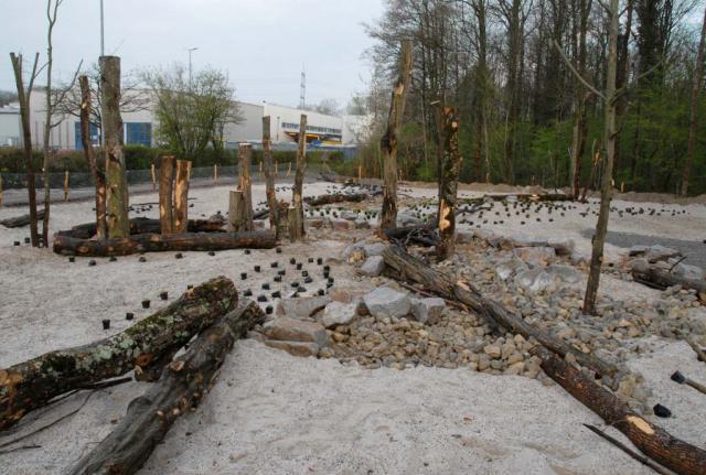 Ein Blick von der anderen Seite zeigt die Vielfalt der Strukturen und Substrate. Es gibt verschiedene Arten und Formen von Totholzstämmen, Sand in grob und fein, Kies in verschiedenen Korngrößen und Kalkschotter mit Feinanteil sowie größere Flächen mit groben Steinen und sogar noch einzelne Findlinge. .