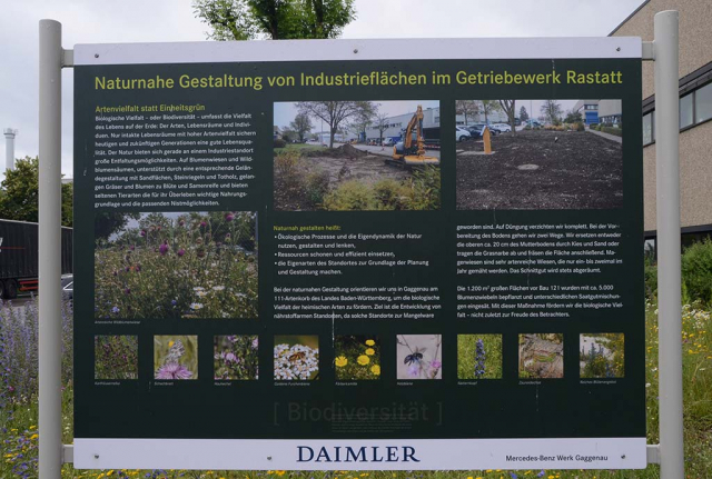 Große bunte Schautafel mit Baustellenfotos. Auf großen Schautafeln hat Ralf Gensicke alles fein säuberlich dokumentiert. Jeder Werksmitarbeiter soll wissen, was und warum das hier gemacht wird