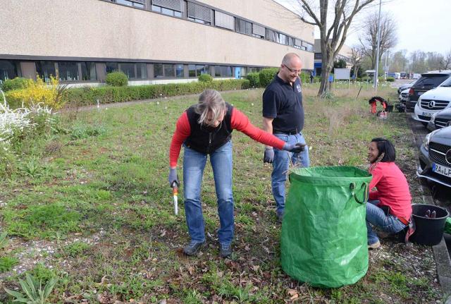 Drei Leute mit Unkrautstechern beim Jäten auf der Magerwiese, neben ihnen ein großer grüner Abfallsack. Das Gartenteam bei der Arbeit. Seit über ein Jahrzehnt leiten wir die Pflege bei Daimler an. Das war zielführend.