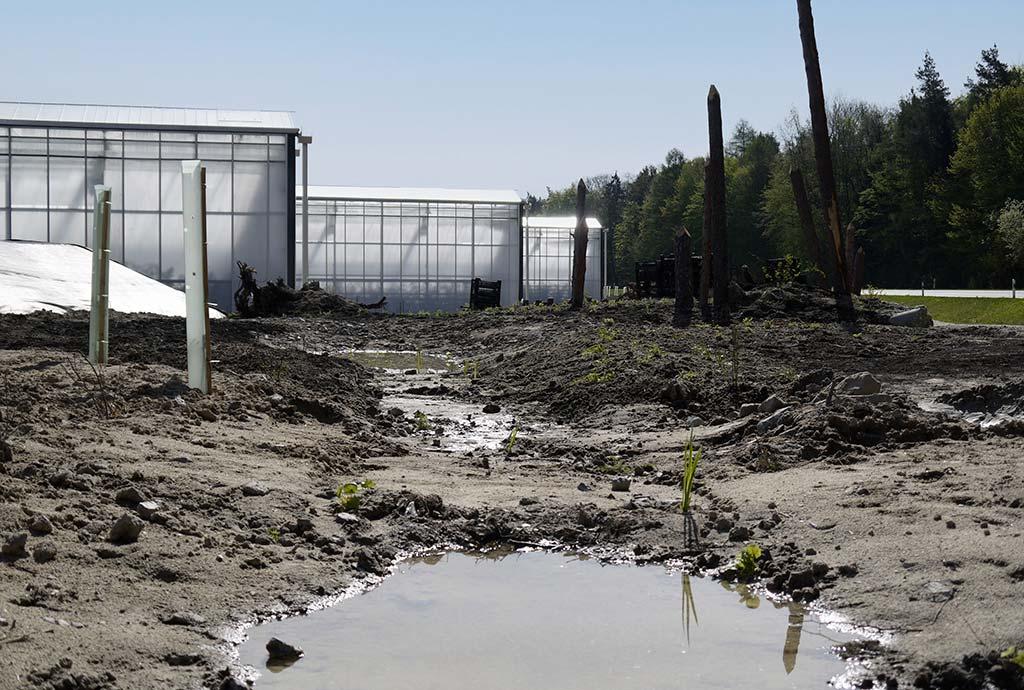 Eine Kette von Teichen mit Wasser. Insgesamt 34 Teiche haben wir auf den 2,2 Hektar Außengelände angelegt