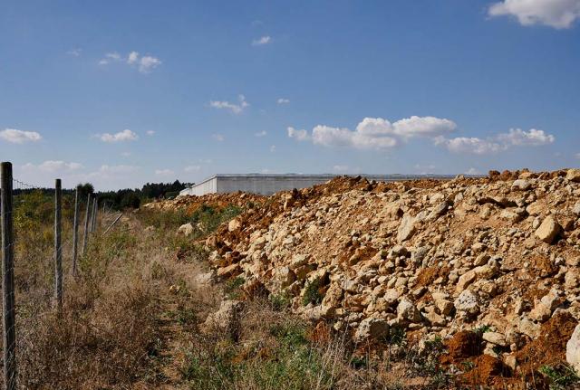 Grob aufgeschüttete 5 m hohe Böschung. Die kilometerlange Südseite vor der Feinmodellierung. Hier sollen Trocken-Lebensräume für Zauneidechsen und Wildbienen enstehen