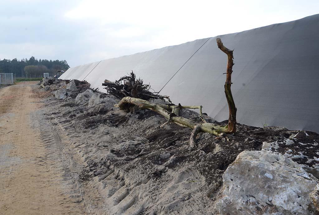 Ein kleinerer Steinriegel an anderer Stelle. Neu aufgeschüttet mit Sand, Totholz und Felsbrocken. Grob modelliert, aber das verändert sich bald