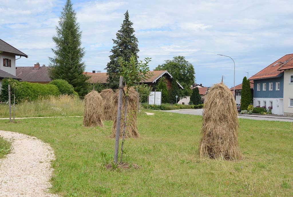 Heumandl auf abgemähter Blumenwiese. Die Unterwirtswiese wird wie im alten Stil gepflegt. Der Bauhof hat Spaß daran