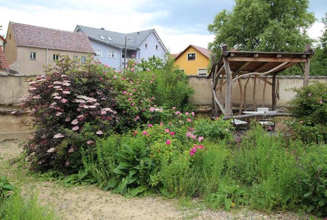 Laube mit markanter Gehoelzgruppe im Fruehsommer 2020. Es bluehen verschiedene Gartenrosen und der Schlitzblaettrige Holunder, Foto: A. Welskop