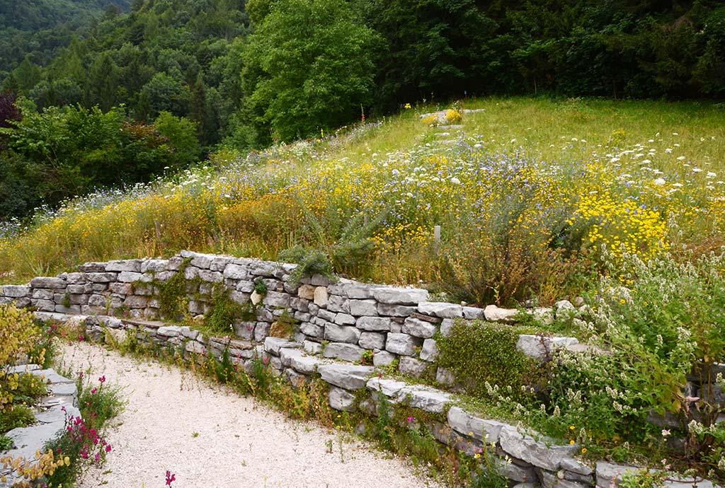 Die neu angelegte Wildblumenwiese am Hang ist ein lebendige Bereicherung für alle. Davor liegt eine hohe Trockenmauer mit Sitzbank