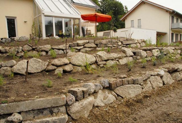 Frisch bepflanzte Beetterrassen. Trockenmauern aus Betonbruch-Steinen von der Deponie und gekauften Natursteinen  als Abgrenzung für die verschiedenen Rosen-Blumenbeete