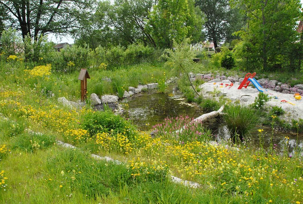 Blick auf Blumenwiesen im Vordergrund und die Sandinsel im Bach. Noch ein Jahr später. Kaum vorstellbar, dass das einmal anders ausgesehen haben könnte