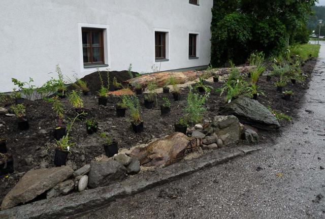 Pill 2016: Staudenbeet vorm Haus – Stauden und Gehölze sind zum Pflanzen ausgelegt