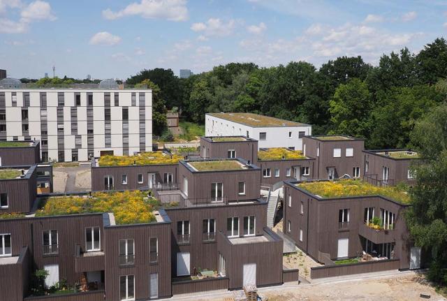 Überblick über eine Gruppe blühender Dächer. Alles in allem sind beim Prinz-Eugen-Park über 70 kleine und große Biodiversitätsdächer entstanden. Ein reiches Experimentier- und Erfahrungsfeld für die Zukunft