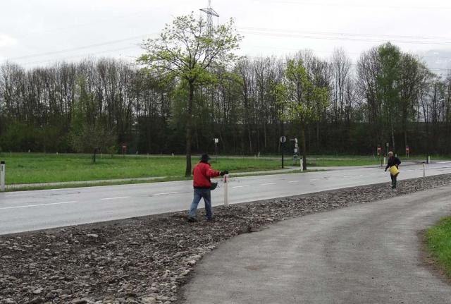 Zwei Leute laufen mit Saatschalen über den Kies. Reinhard Witt und ein  Naturgartenprofi-Praktikant säen einen Streifen an der Zufahrtsstrasse ein.