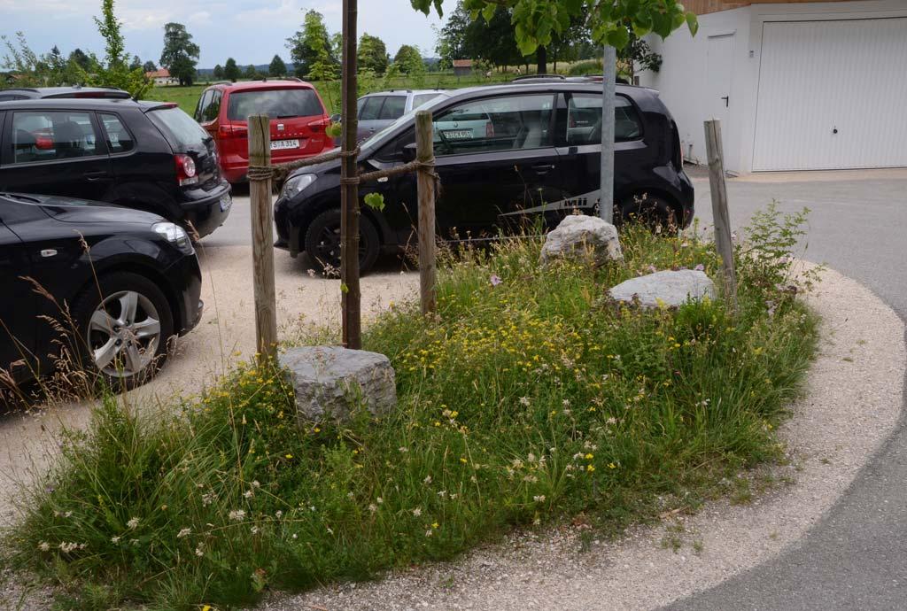 Auf einer kleinen Parkplatzinsel mit wassergebundener Wegedecke blüht eine bunte Blumenwiese