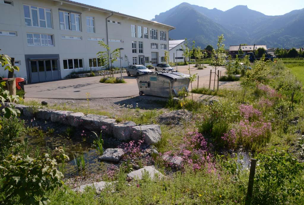 Parkplatz mit wassergebundener Wegedecke und den blühenden Regenwasser-Versickerungsmulden am Rand des Geländes. Nur die sehr häufig von Lieferdiensten benutzte Durchfahrt wurde asphaltiert