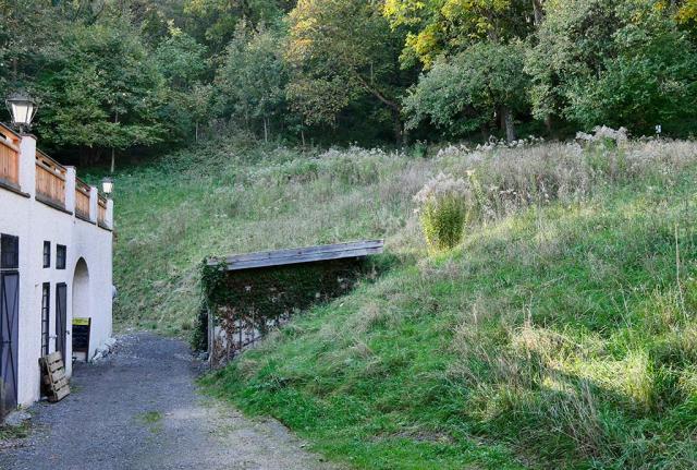 Nicht gemähte Böschung. Auch andere Graswiesen waren verloddert, verbracht und unansehnlich.