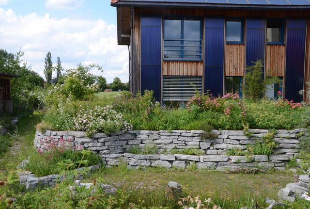 Blick vom Senkgarten nach oben über Trockenmauern zum Haus. Das Rosen-Duftpflanzenbeet, älter und eingewachsen.