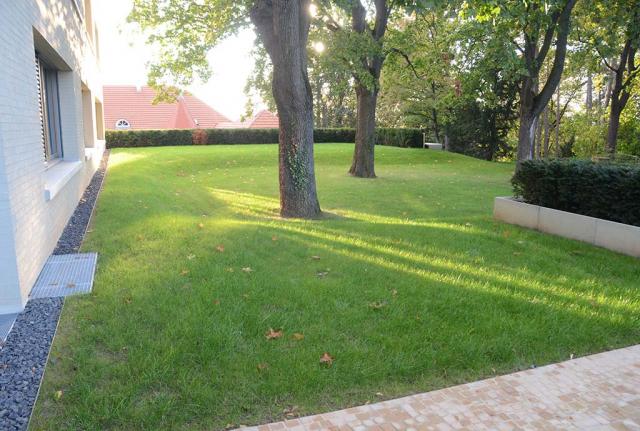 Die Situation vorher. Gruene, junge Rasenfläche mit  Baeumen am Haus. Alles pikobello. Hier lebt nichts außer Hochzuchtgraesern, die jede Menge Wasser, Dünger und Schnittt brauchen