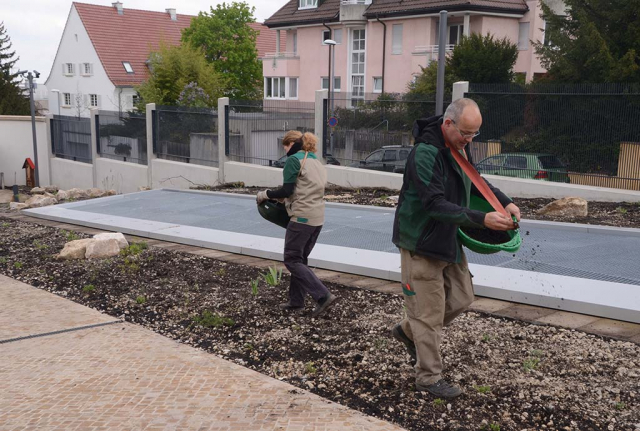 Gaertnermeister Klaus Huber und Katja Siegmann bei der Ausaat der neu angelegten und bereits bepflanzten Flaechen